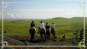 Passeios a Cavalo Trilha da Fazenda